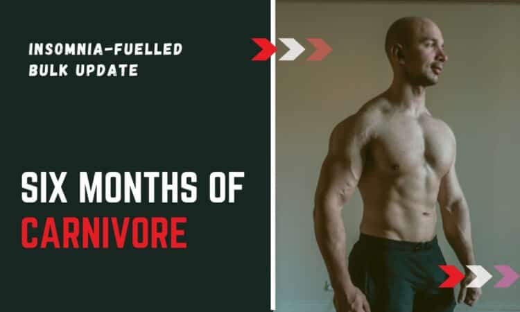 can you gain muscle on carnivore